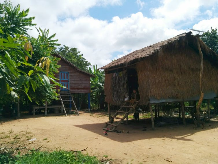 Contemporary dwellings in Cambodia built on stilts